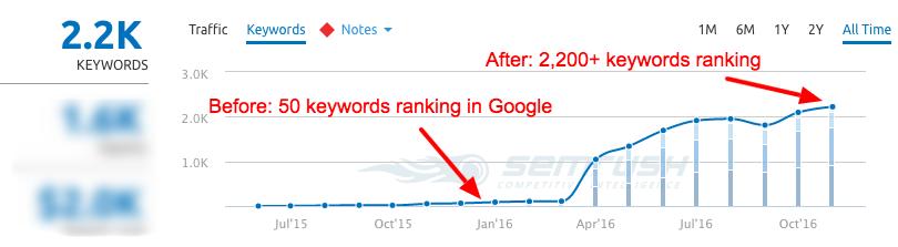 organic-rankings-in-google